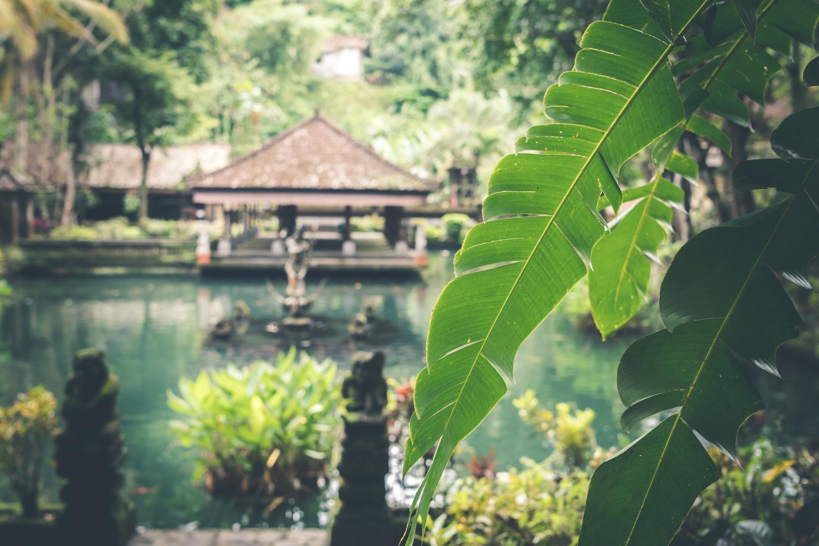 Balinese Hotel