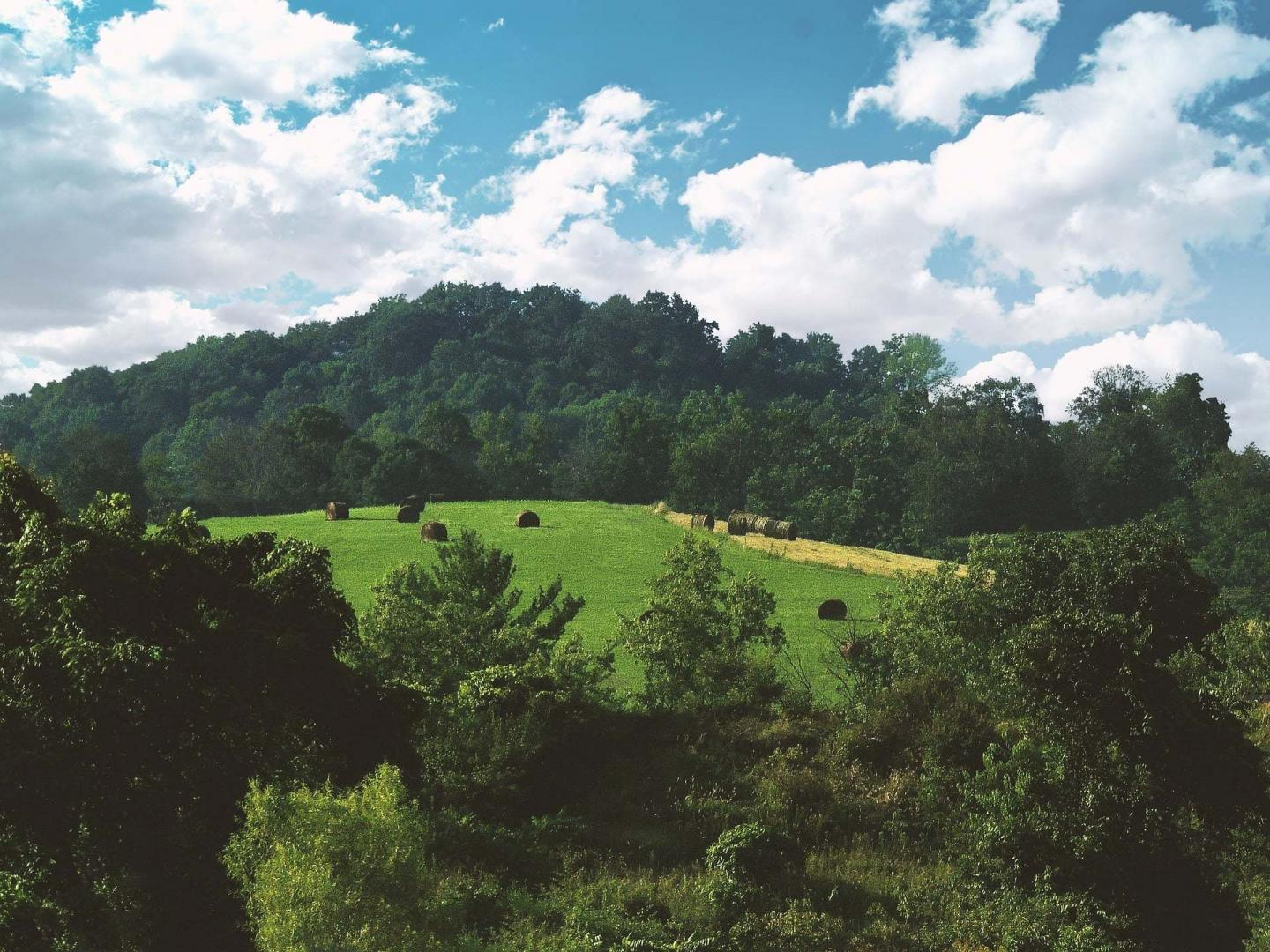 kentucky attractions for couples